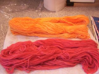 Black Cherry and Orange dyed and drying